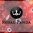 5 Reasons to Register + Get  £20 Royal Panda Free Bet